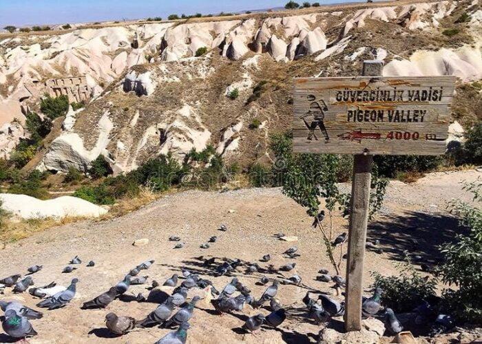 pigeon-valley-cappadocia